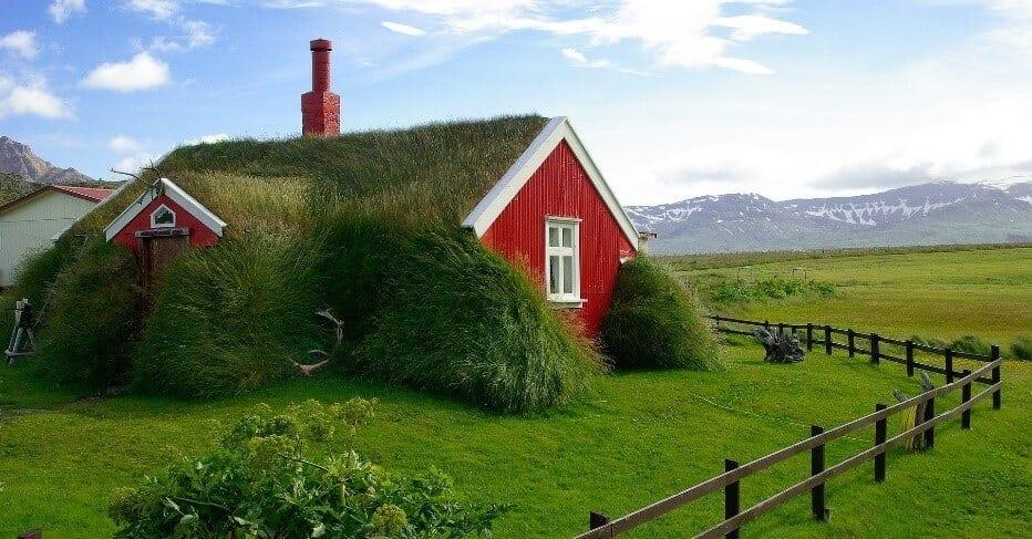 Zeleny-dom-na-Islande-zelena-strecha-travnaty-porast