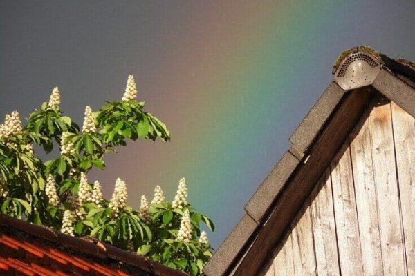 Lesklosť a farbostálosť strechy