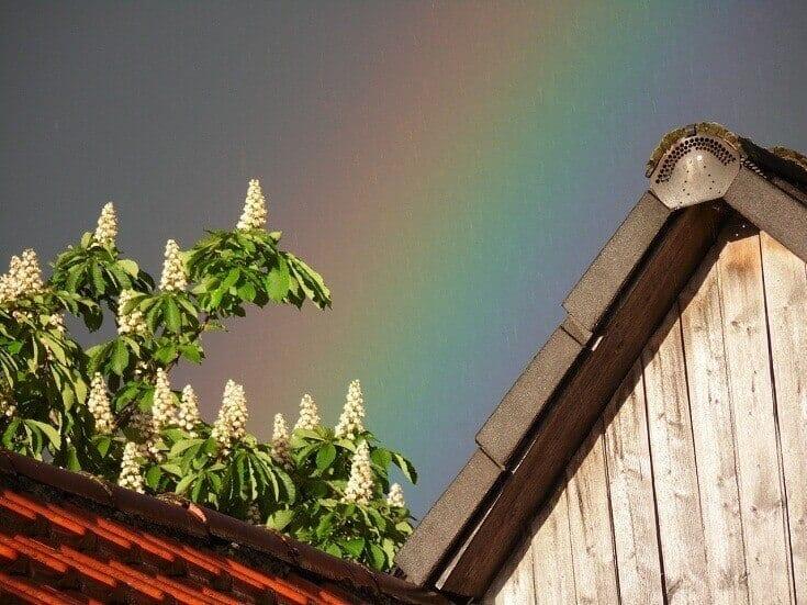 Prečo nie je možné zaručiť lesklosť a stálofarebnosť strechy