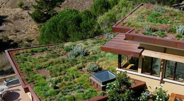 eko-zelena-strecha-stresna-terasa