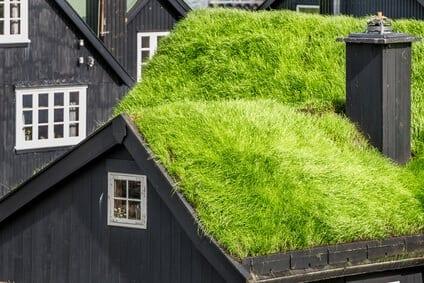 dreveny-dom-so-zelenou-eko-strechy-biele-okna-komin-travnata-strecha