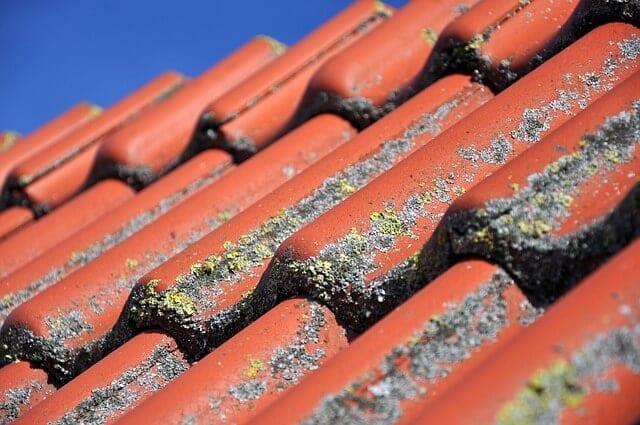 Mach na streche