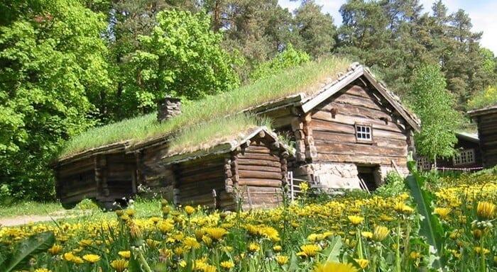 mach-na-sttreche-chalupka-opusteny-dom-zelena-strecha
