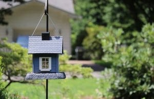 Domček pre vtáky