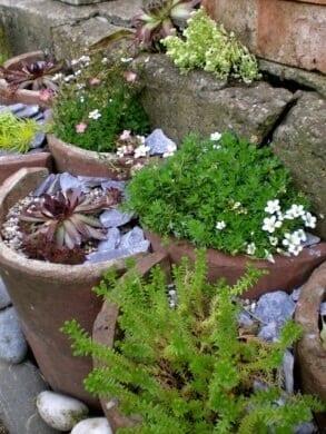 kvetináč zo škridly