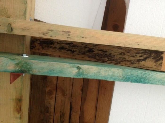 plesen-na-drevenych-hranoloch-v-krove-strechy