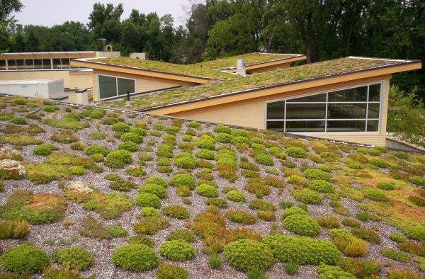 zelena-eko-strecha-pre-sikme-strechy