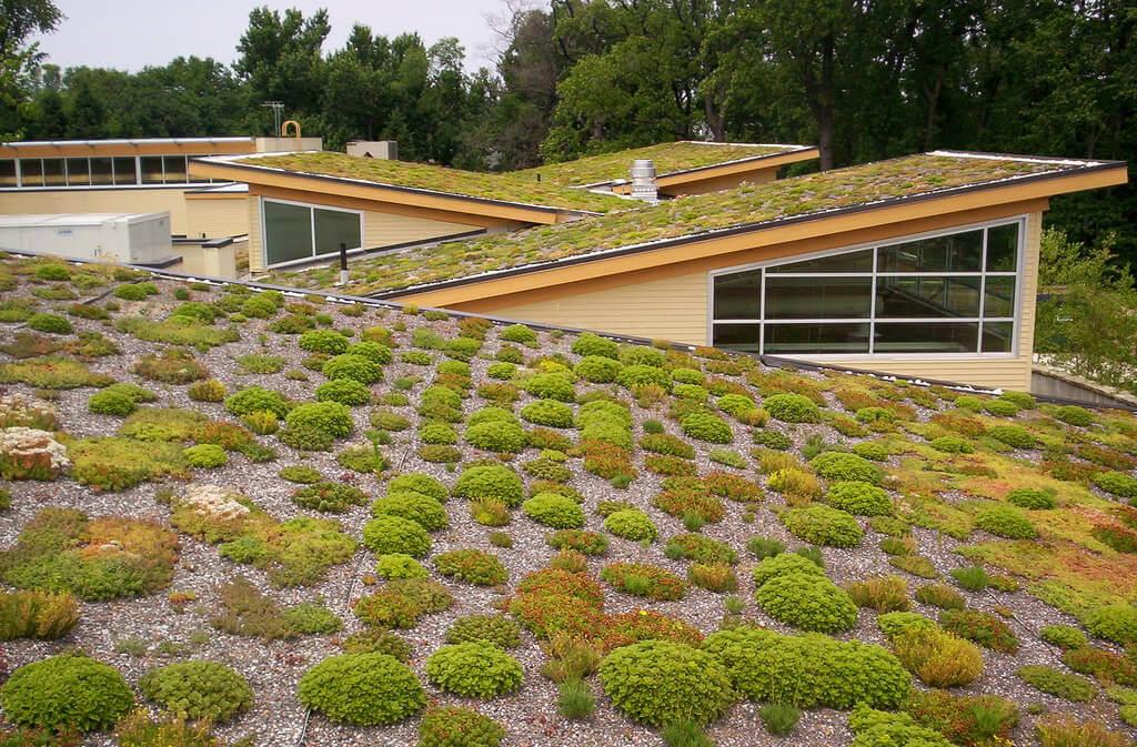 Zelená eko strecha pre šikmé strechy