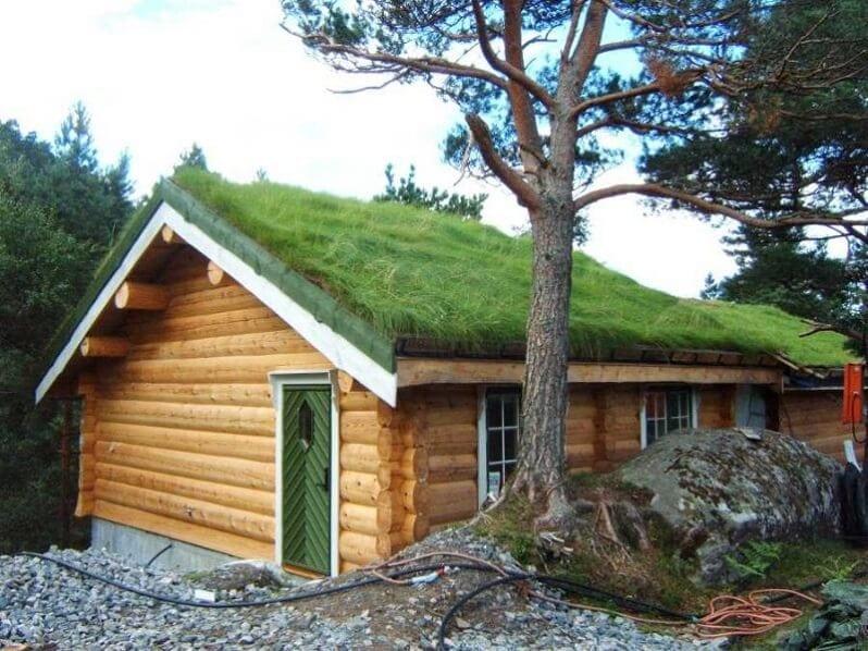 zelena-sikma-strecha-eko-trava-na-streche-drevostavba-dreveny-dom