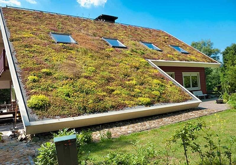 zelena-sikma-strecha-eko-zelen-na-streche-drevostavba-dreveny-dom-stresne-okna