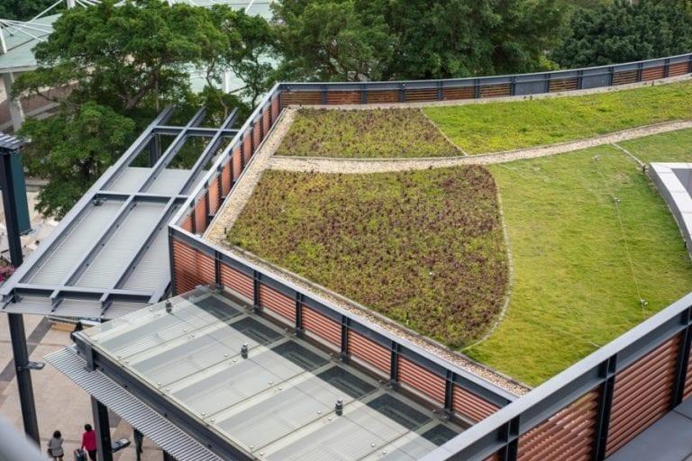 plocha-vegetacna-strecha