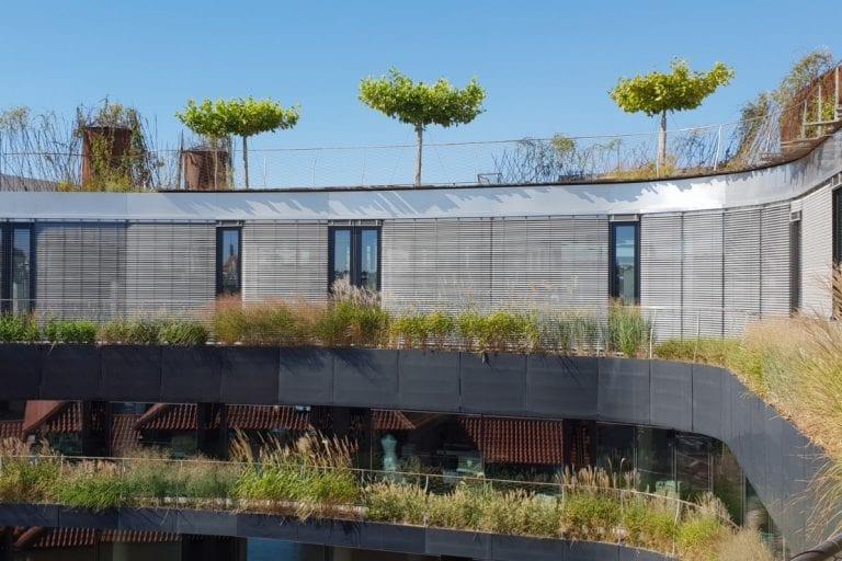 zelena-strecha-roku