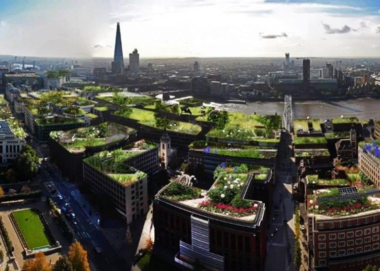 zelene-strechy-buducnosti