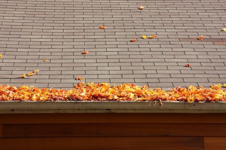 strecha-odkvap-listie-ocista
