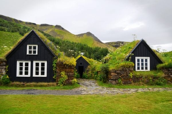 vegetačná strecha