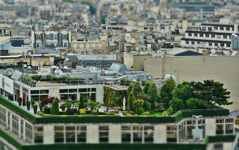 stresna zahrada vegetačná strecha