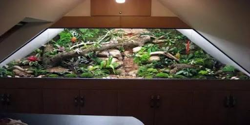 podkrovie-dreveny-nabytok-terarium-rastliny