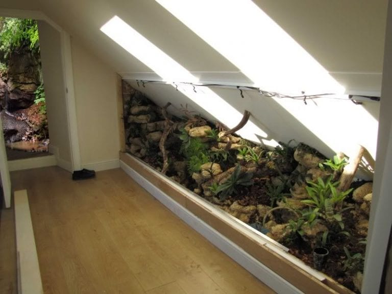 terarium-podkrovie-slnko-byvanie-priroda-domov