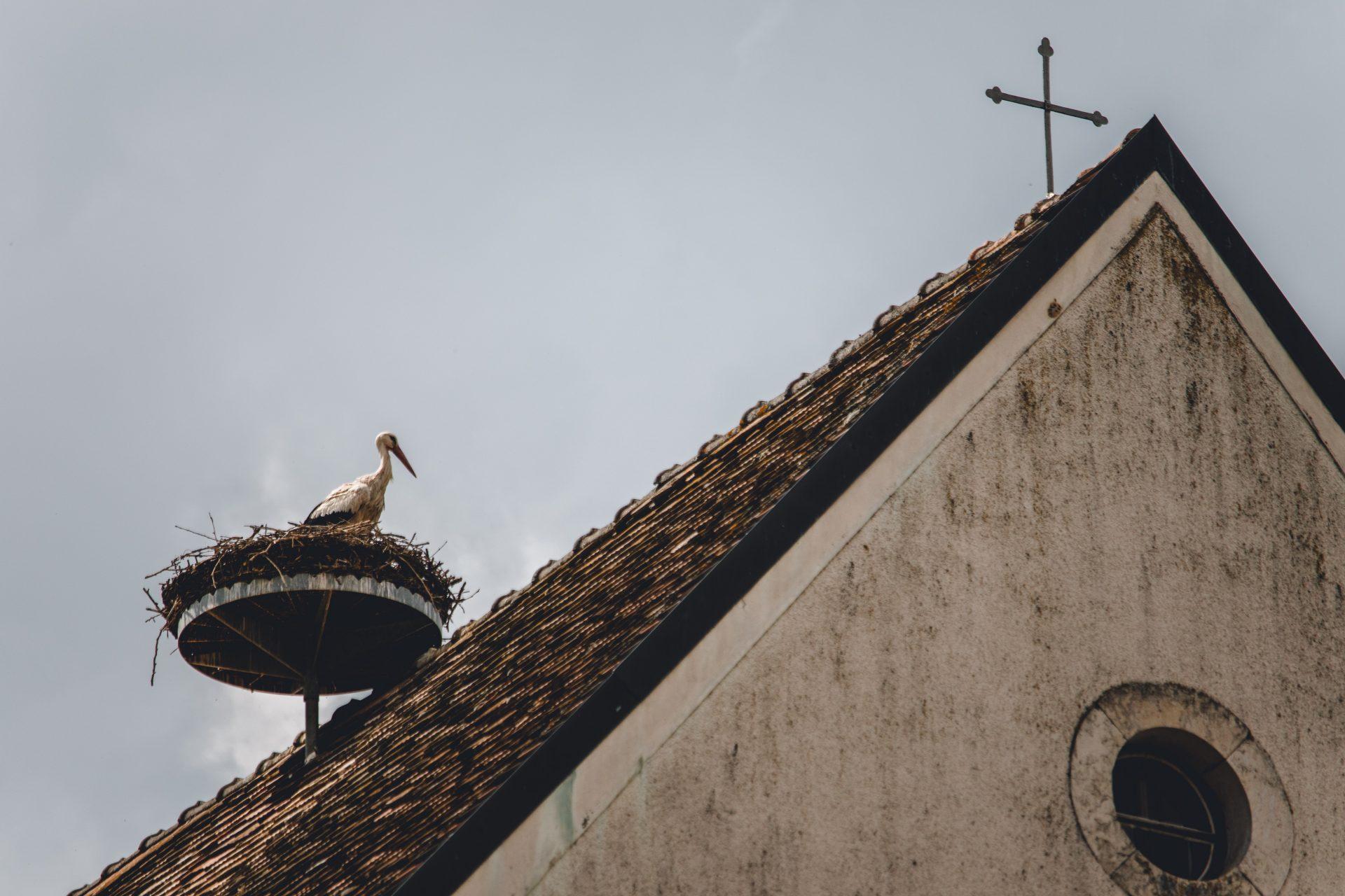kovova-konstrukcia-bocian-hniezdo-strecha-kostol